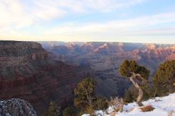 Grand Canyon 7